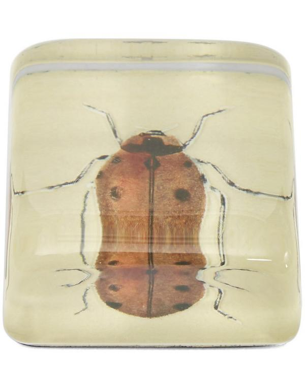 Orange Ladybug Paperweight