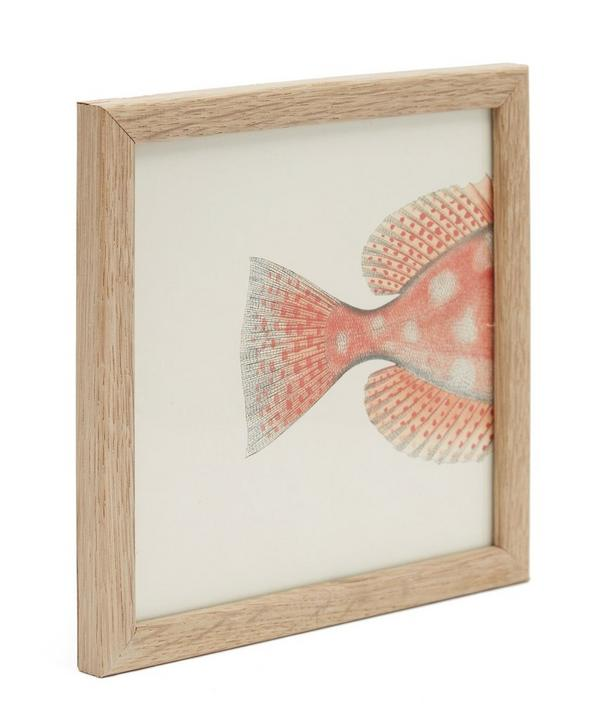 Orange Fish Rear Half Framed Print