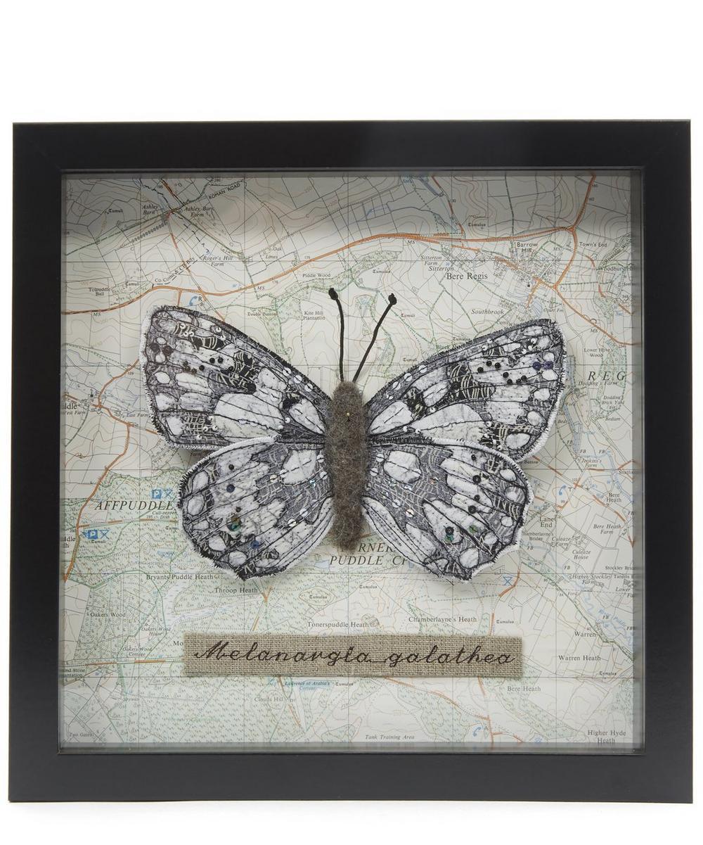 Single Framed Butterfly Box