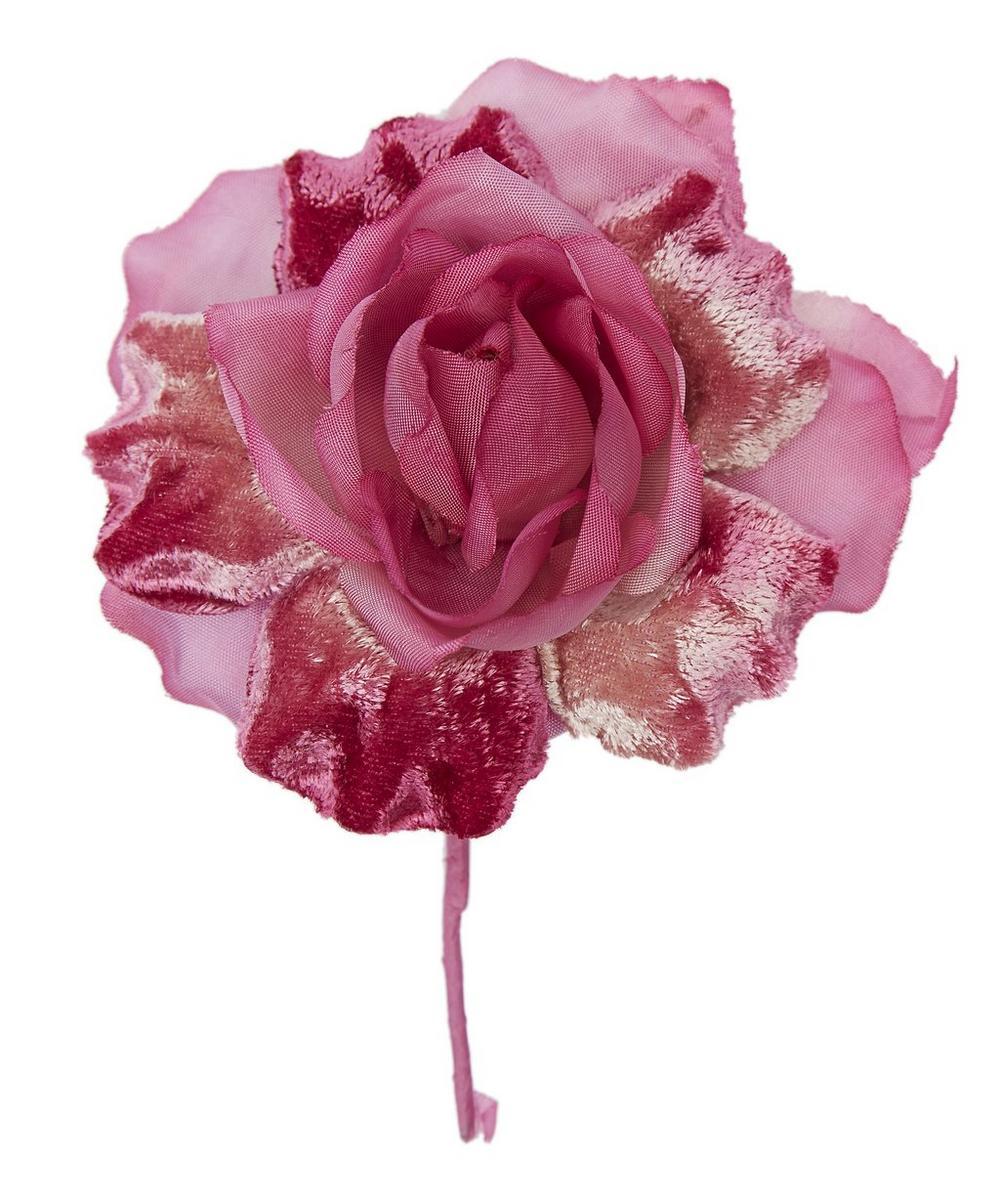 Organza and Velvet Rose