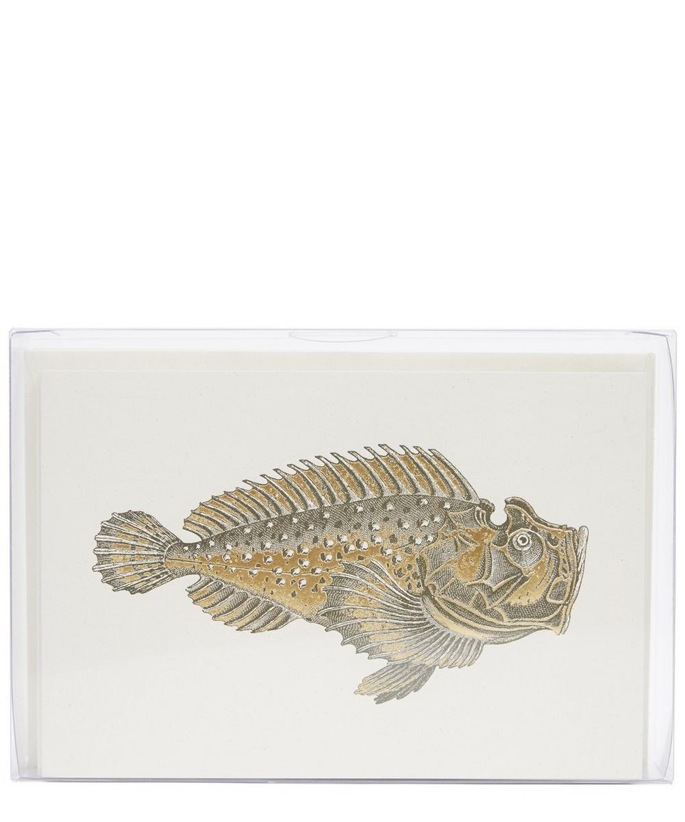 Wrasse Fish Notecards