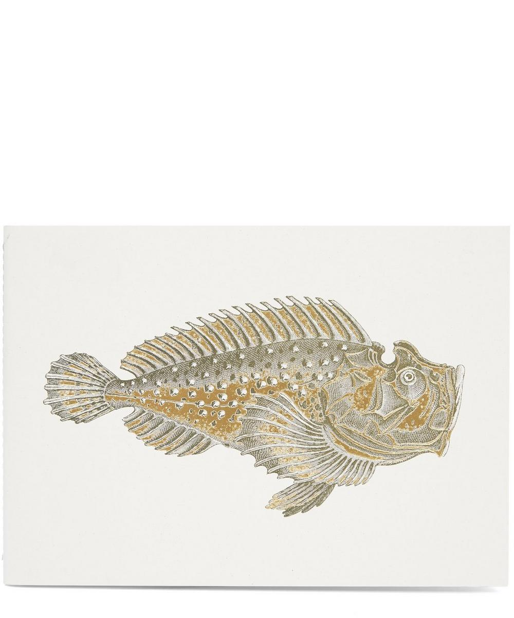 Wrasse Fish A5 Notebook