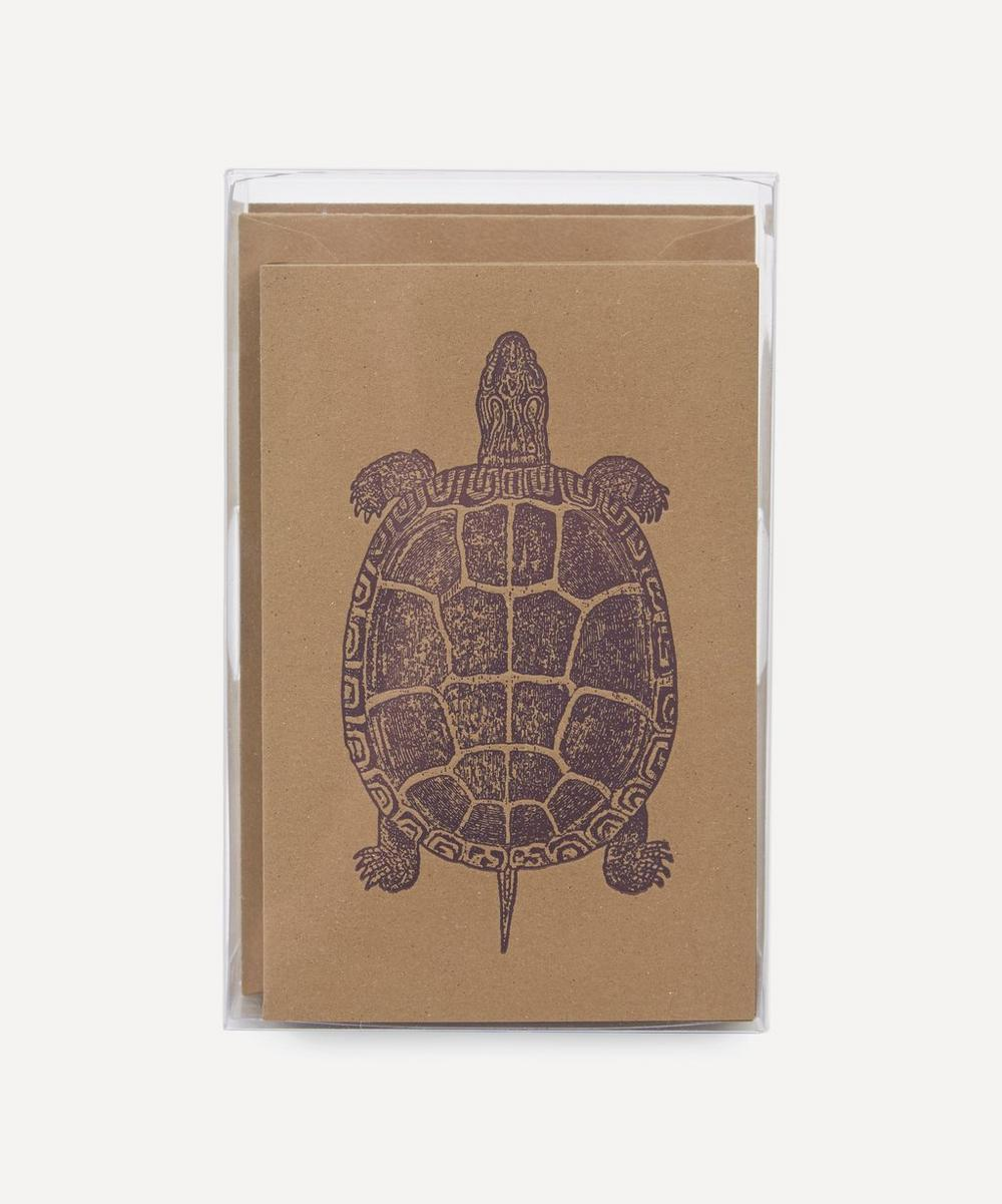 Turtle Notecards