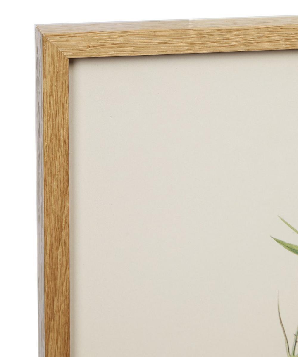 Leaf 1 Framed Print
