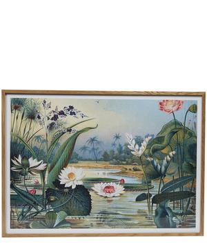 Water Plants Framed Print