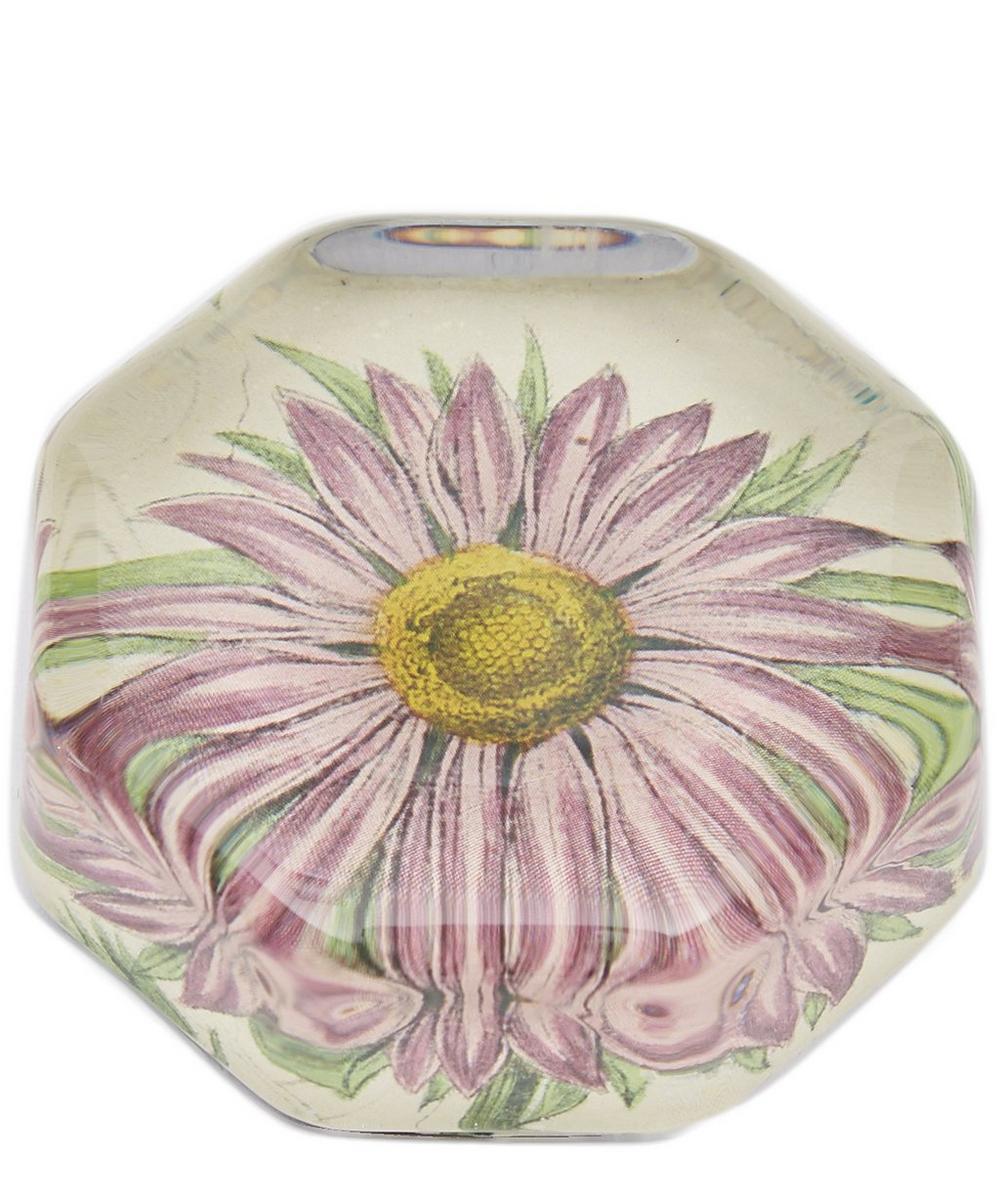 Pink Aster Octagonal Paperweight