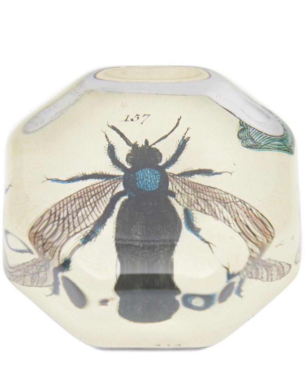 Fly Octagonal Paperweight