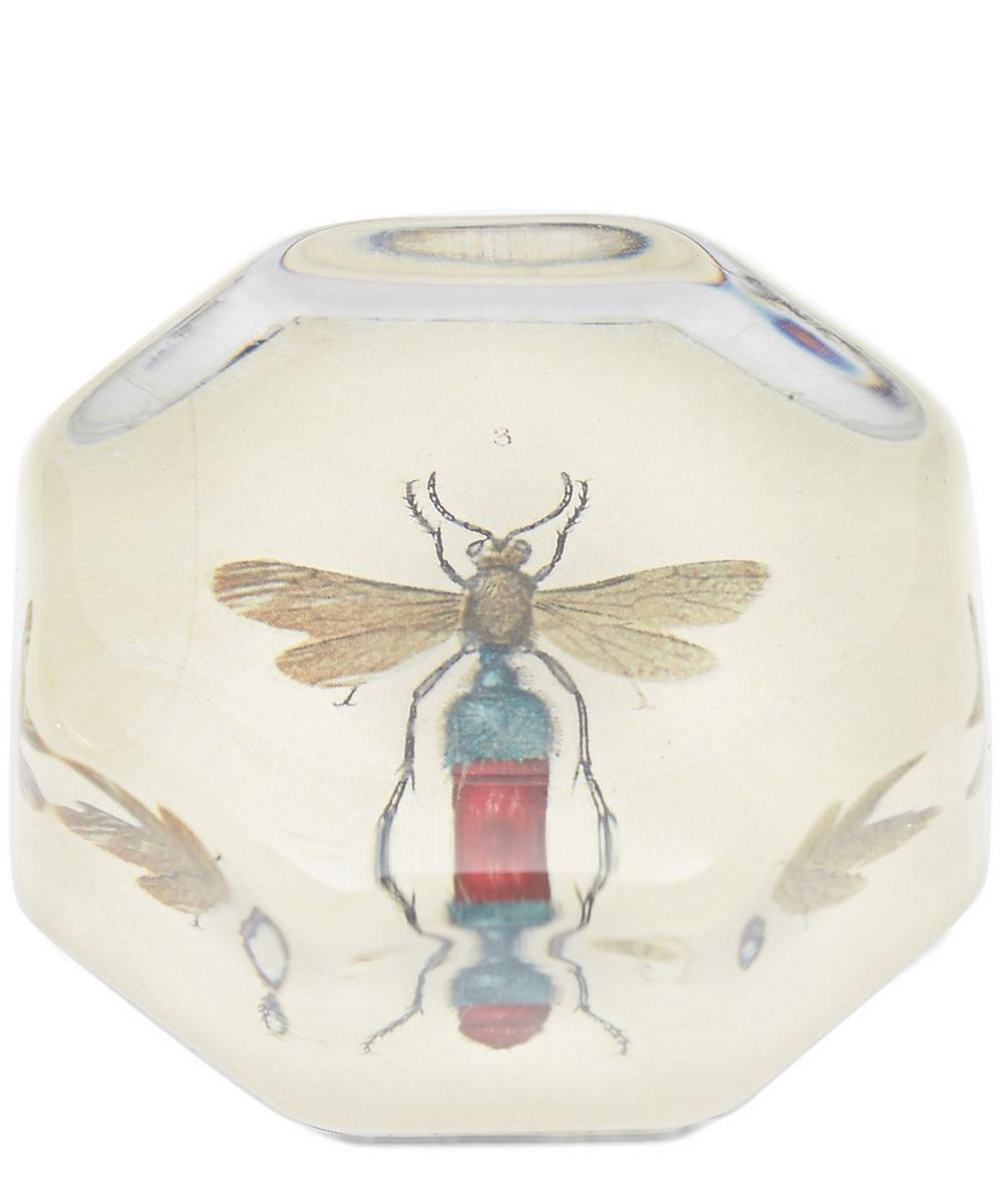 Red Dipped Insect Octagonal Paperweight