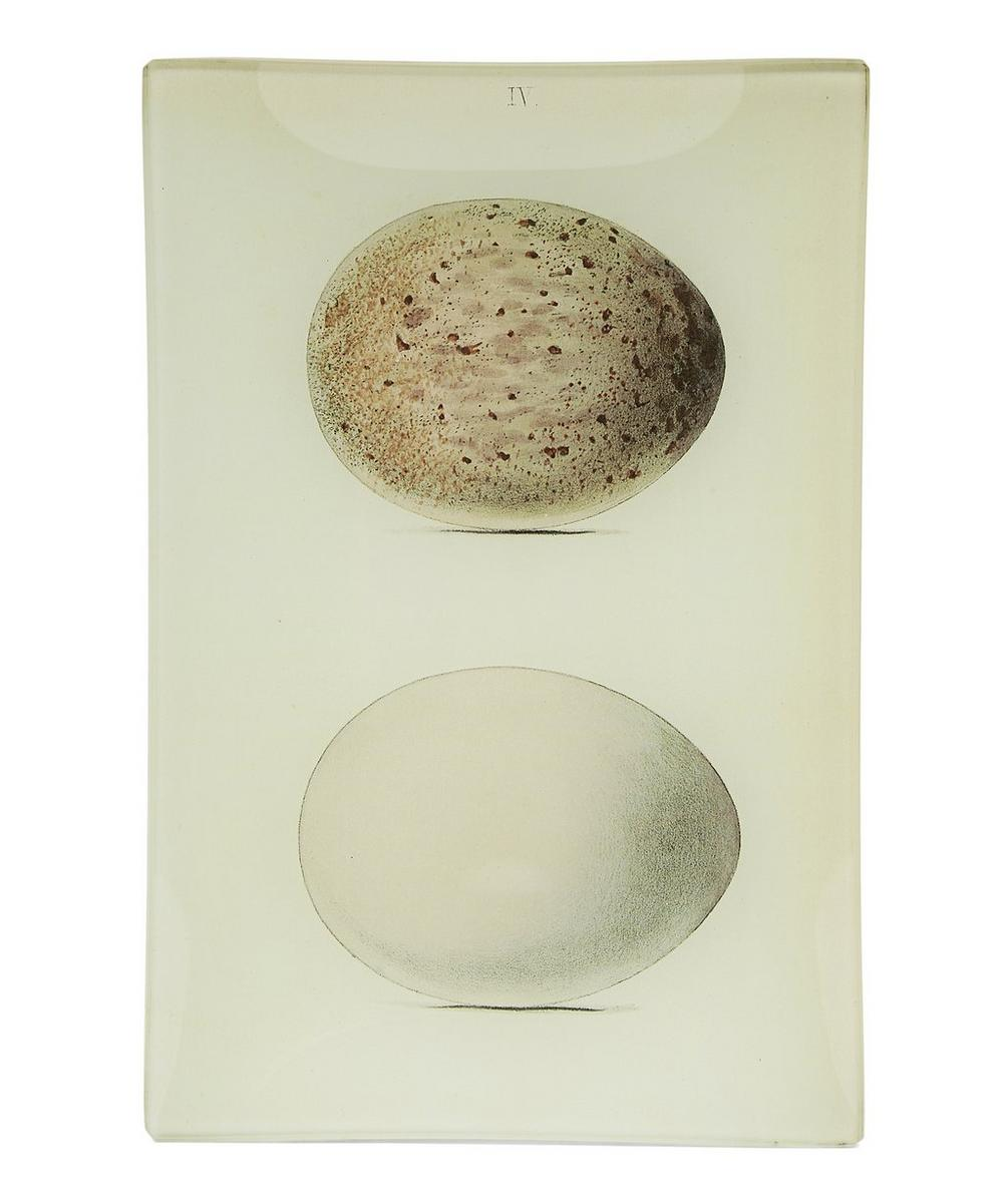 Eggs No. 4 Rectangular Tray