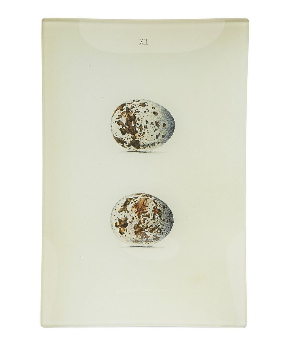 Eggs No. 12 Rectangular Tray