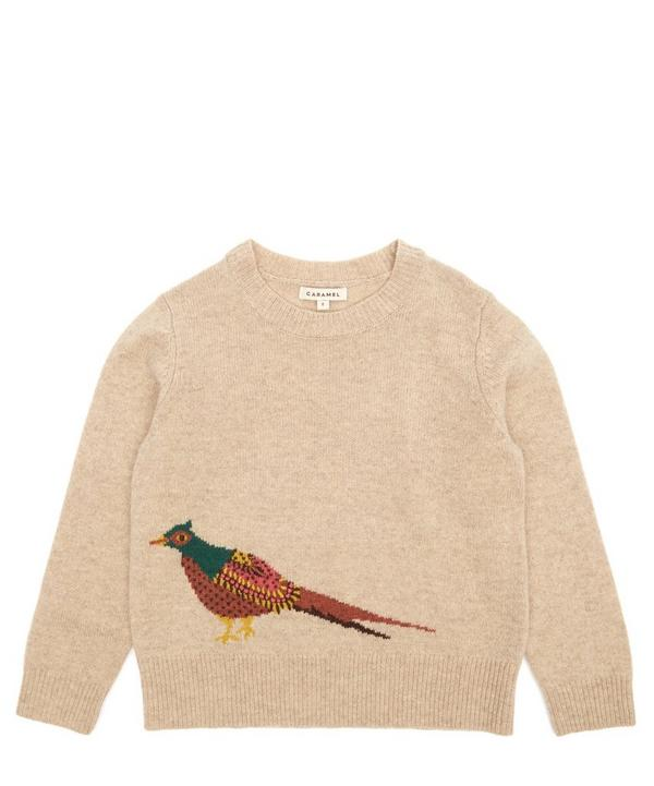 Pheasant Jumper 8 Years