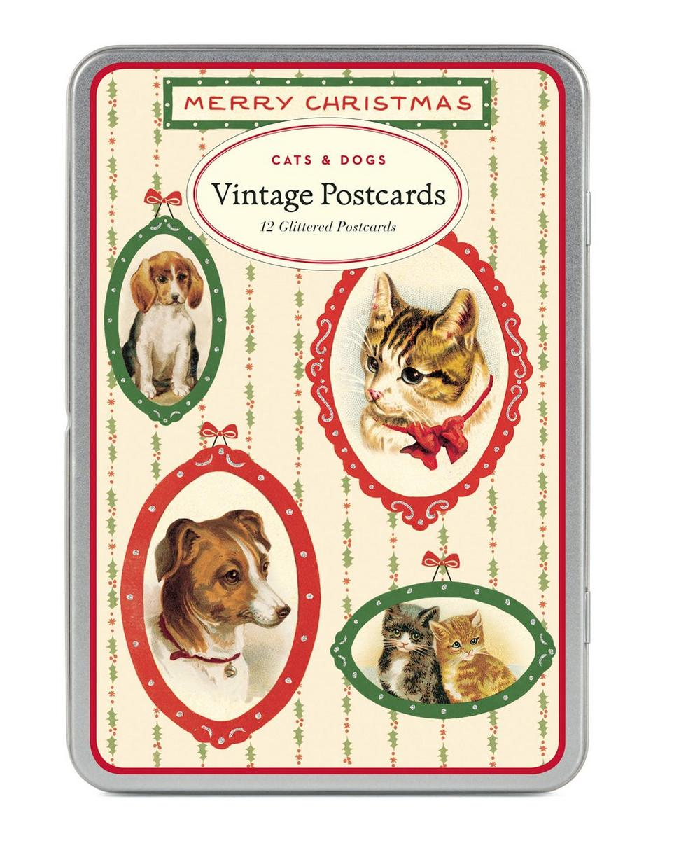 Cats and Dogs Postcard Pack