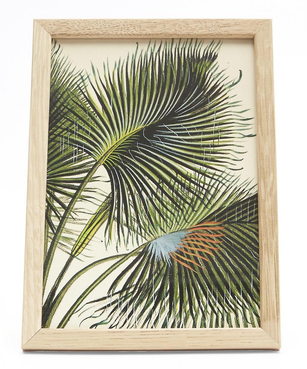 Plant No. 20 Framed Print