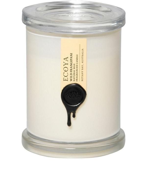 Wild Frangipani Metro Jar Candle