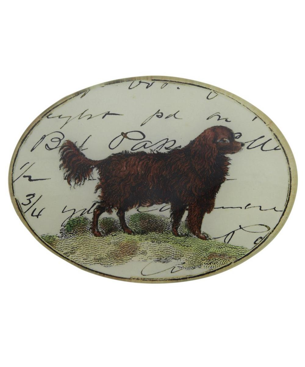 Pointer Show Dogs Glass Oval
