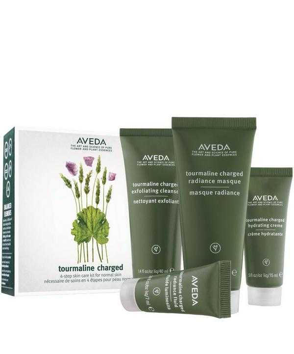 Botanical Kinetics Skin Care Starter Set for Normal Skin