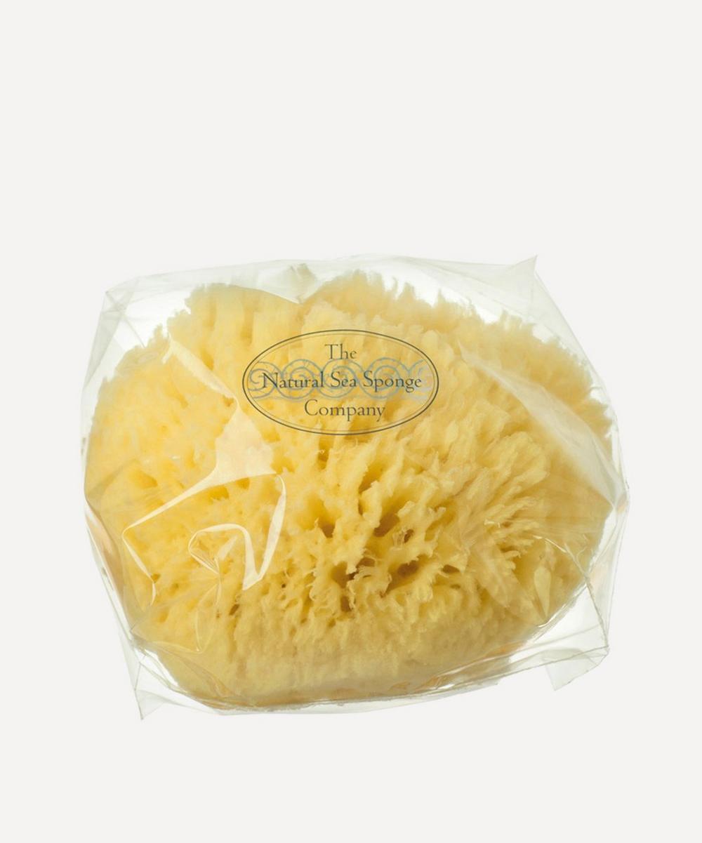 Large Natural Sea Wool Sponge
