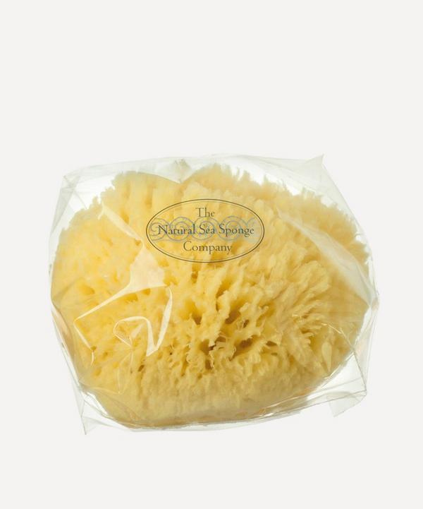 Large Natural Sea Wool Sponge