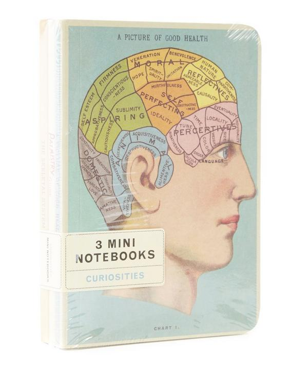 Curiosities Mini Notebook Set