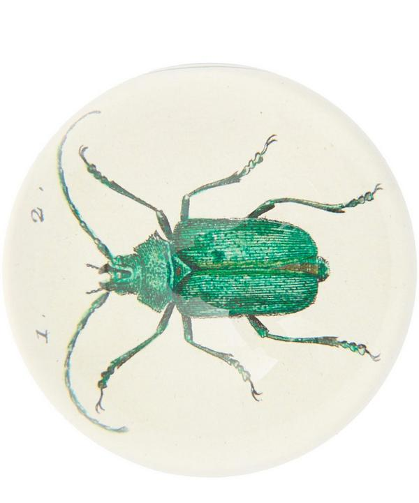Scarab Beetle Glass Dome Paperweight