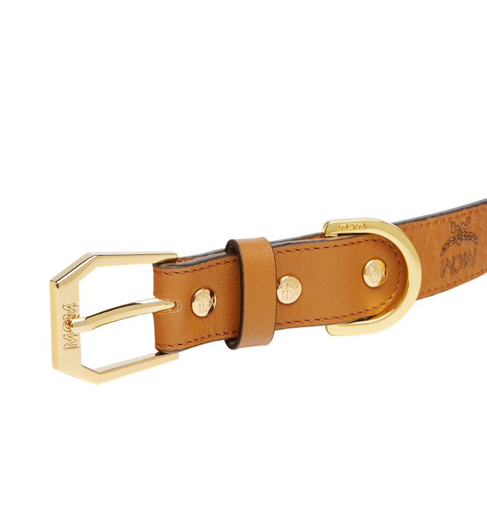 MCM Dog Collar in Visetos MEZ7AVP05CO001 AlternateView4