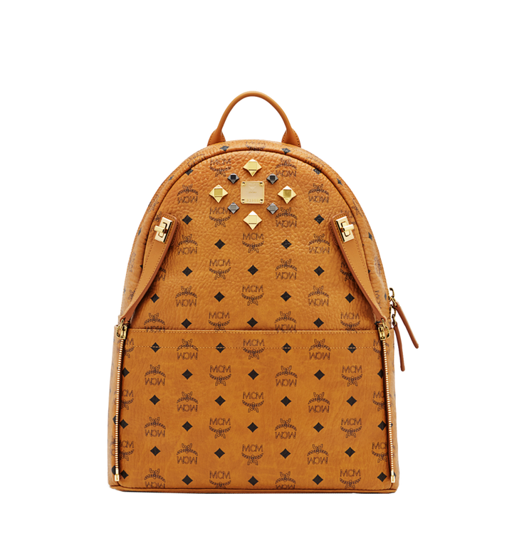 MCM Dual Stark Rucksack in Visetos MMK6SVE79CO001 AlternateView5