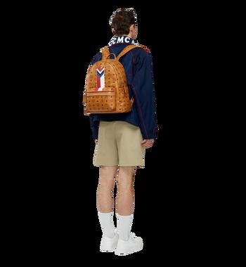 MCM Stark Chevron Stripe Backpack in Visetos MMK8SVE45CO001 AlternateView6