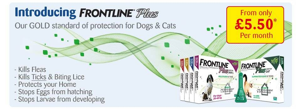 Flea Treatment Subscription Pets At Home