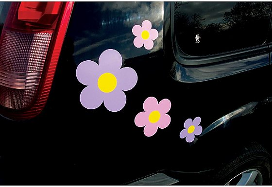 Storm Graphics 'Flowers' Car Stickers