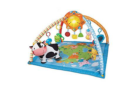 image of Vtech Little Friendlies 2-in-1 Activity Gym