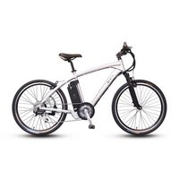 Fast4ward Peak Electric Bike