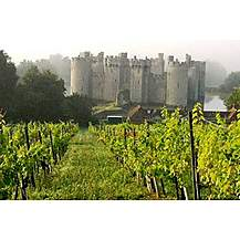 image of Deluxe Vineyard Tour And Tasting For Two