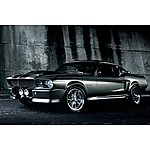 image of Eleanor Mustang Gt500 Experience