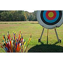 image of Archery Taster