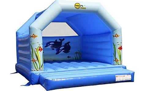 image of Aquarium Super Commercial Bouncy Castle