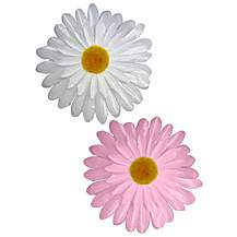 image of Girls Pink & White Flowers