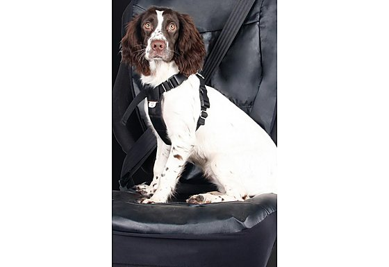 Halfords Medium Dog Car Harness