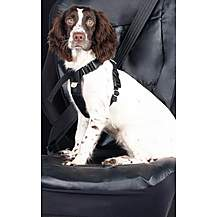 image of Halfords Medium Dog Car Harness