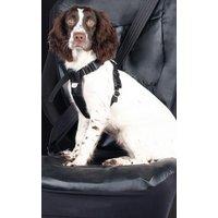 Medium Dog Car Harness