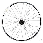 image of Raleigh Pro Build Rear Wheel with Disc Hub 700C - Black