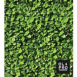 Laurel Hedge 5 Pole Windbreak