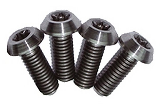 Titanium Lever Clamp Bolts