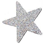 Halfords Silver Star Aerial Topper