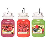 image of Yankee Candle Fruitalicious Car Air Freshener Jar 3 Pack