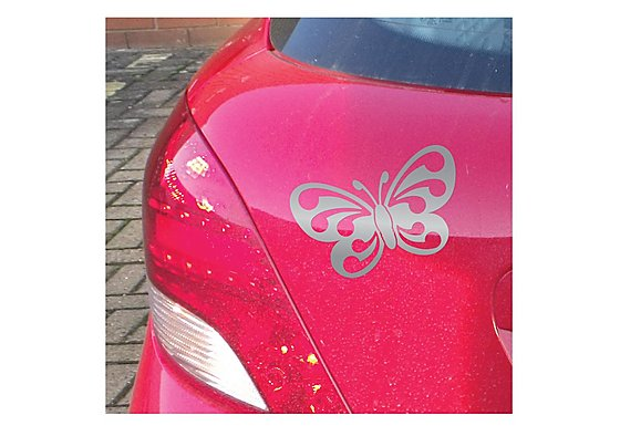 Butterfly Silver Graphic
