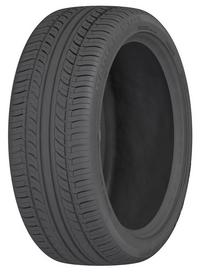 Autogrip F101 (205/55 R16 91H)
