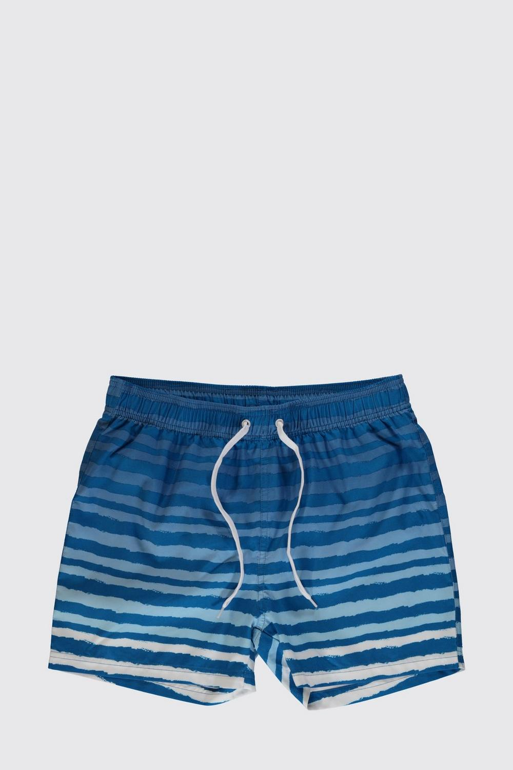 Painted Stripe Short Swim Shorts