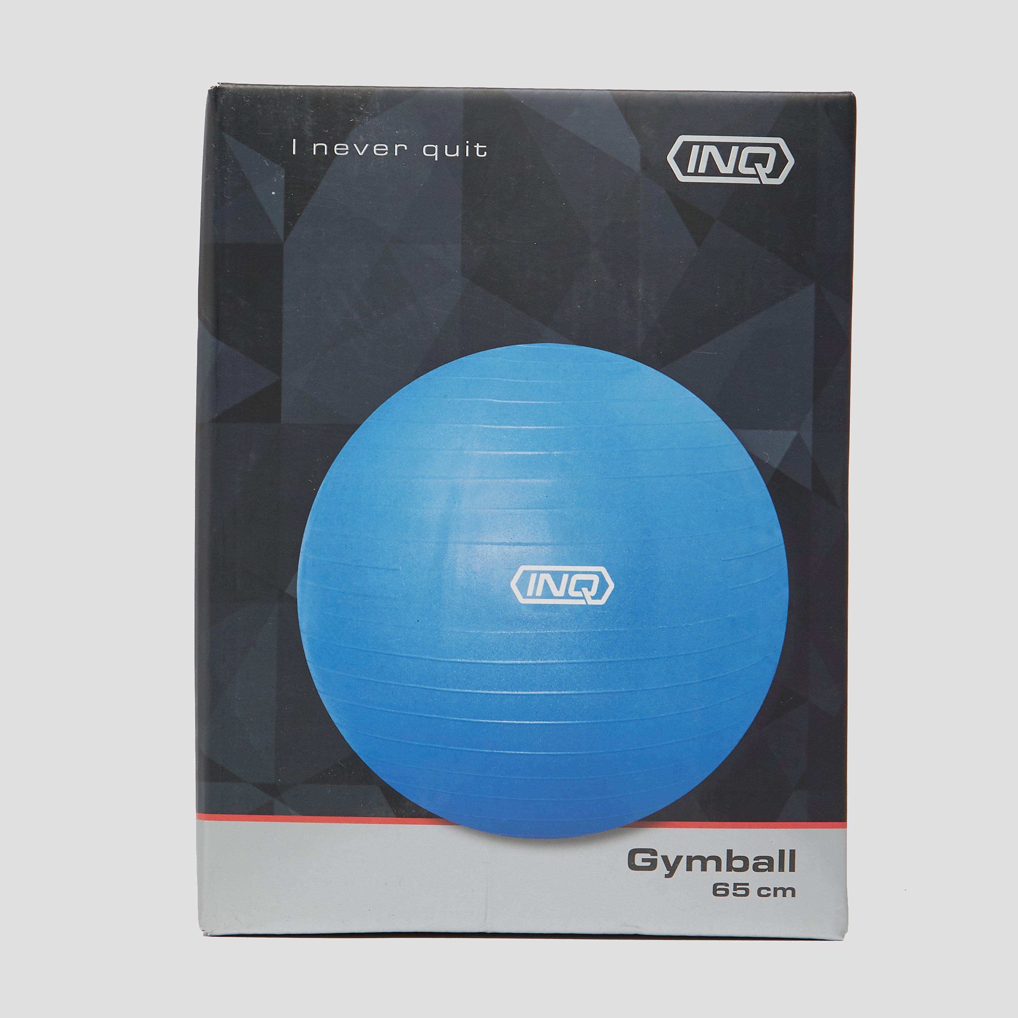 INQ Gymbal 65 centimeter Kinderen