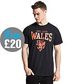 Official Team Wales Dragon T-Shirt