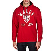 Official Team Wales Arch Hoody